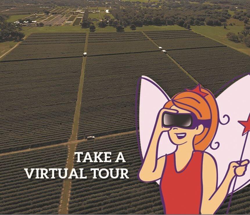 Take Virtual Tour of Wish Farms Plant City